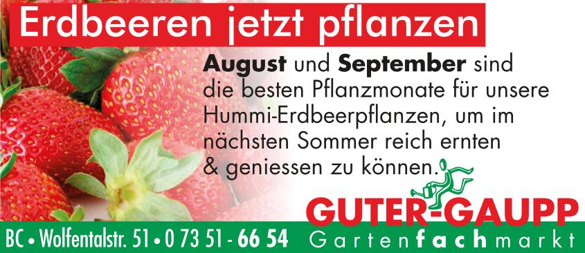 Slider 4 – Erdbeeren